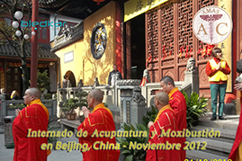 visita a monasterio budista en shanghai
