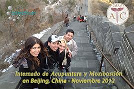 visita a la muralla china durante el internado de acupuntura de 2 semanas en china
