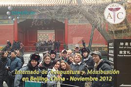 foto del grupo visitando la ciudad prohibida el ultimo fin de semana del curso de acupuntura