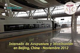 tren bala beijing-shanghai para el recorrido turistico del curso de acupuntura