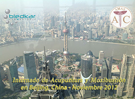 vista aerea de shanghai durante el curso de acupuntura en china