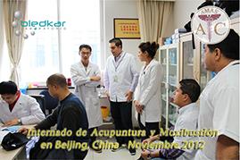 participantes en una sesión de diagnostico en el curso de acupuntura
